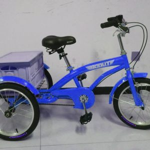 blue kids tricycle