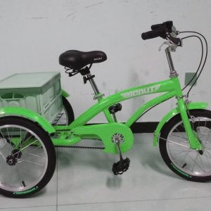 green kids tricycle